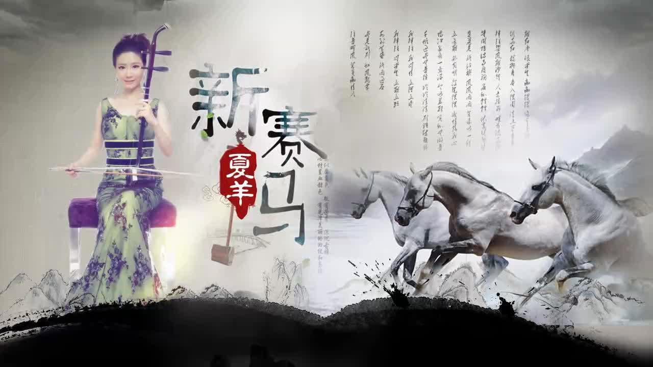 新赛马――二胡炫技夏羊音乐