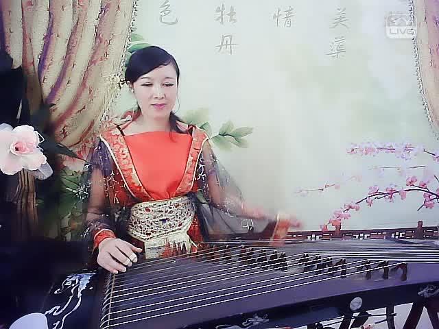 铁血丹心 -                      琴