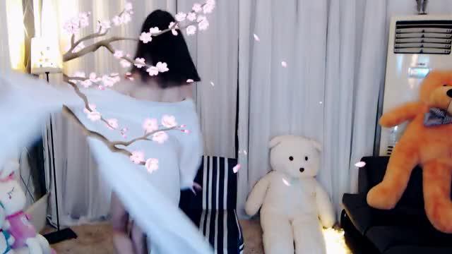 青狐媚【小十六版本】